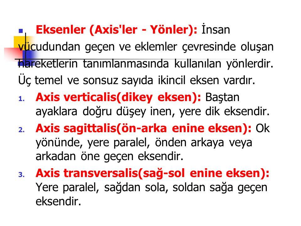  Eksenler (Axis'ler - Yönler): İnsan vücudundan geçen ve eklemler çevresinde oluşan hareketlerin tanımlanmasında kullanılan yönlerdir. Üç temel ve so