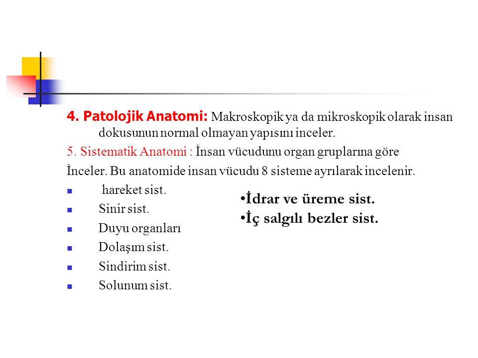 4. Patolojik Anatomi: Makroskopik ya da mikroskopik olarak insan dokusunun normal olmayan yapısını inceler. 5. Sistematik Anatomi : İnsan vücudunu org