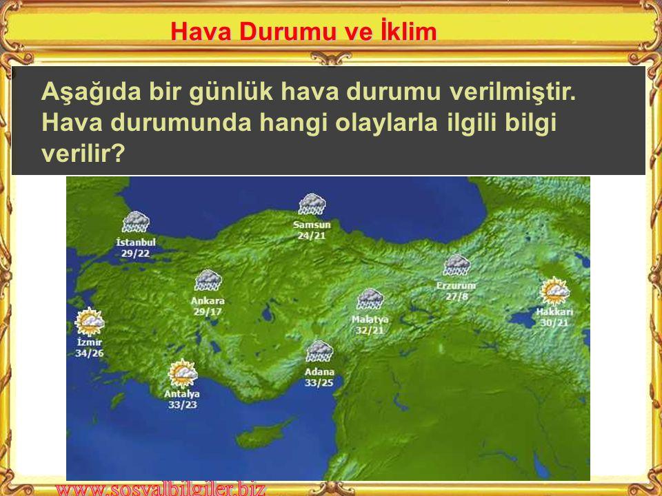 A ) Konya B ) Kocaeli C ) Erzurum D ) Antalya Deniz seviyesinden ne kadar yükseğe çıkılırsa sıcaklık o kadar azalır.