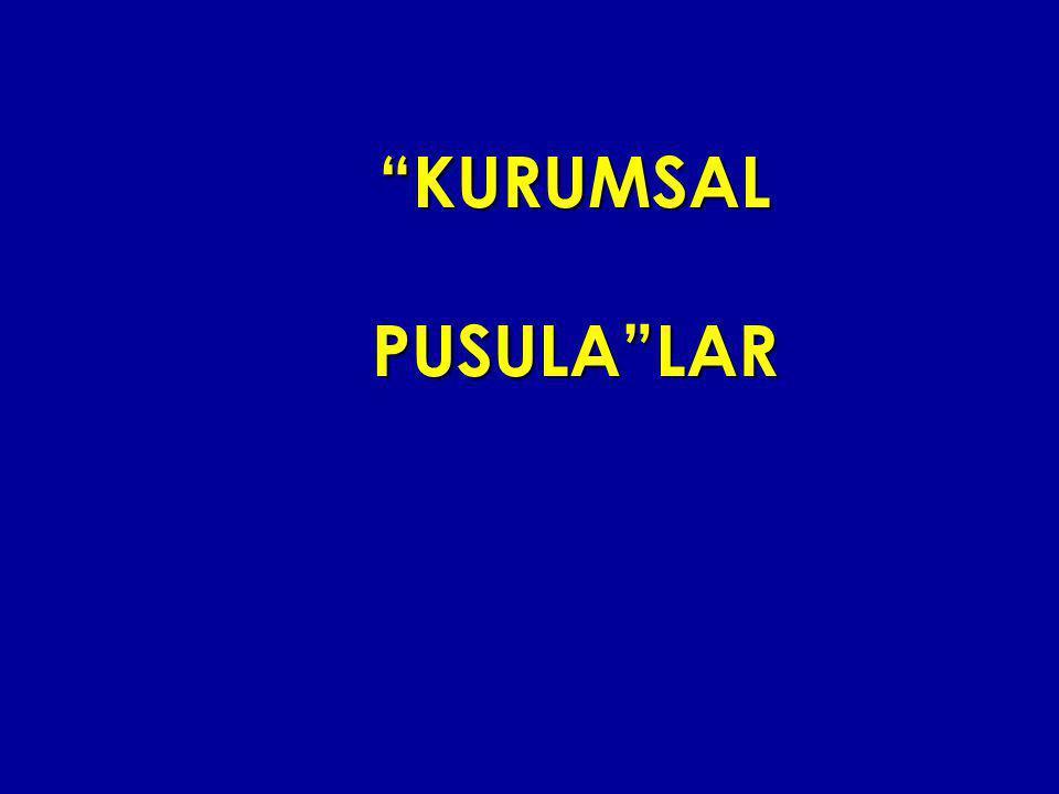 """KURUMSAL PUSULA""LAR"