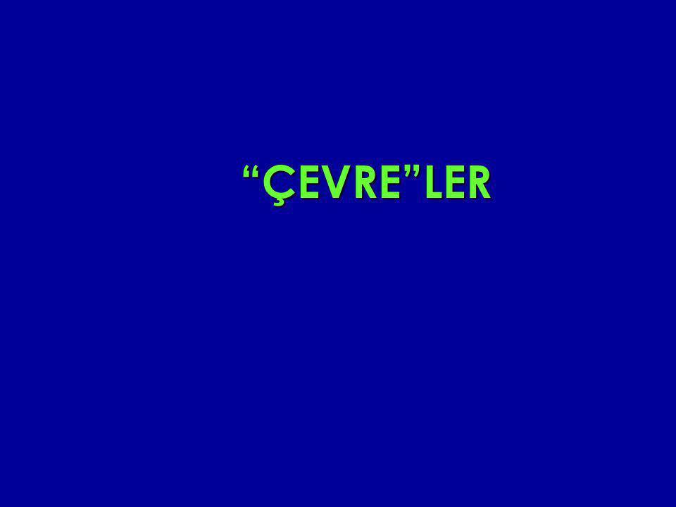 """""""ÇEVRE""""LER"""