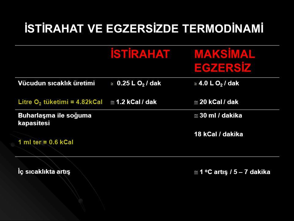 İSTİRAHAT VE EGZERSİZDE TERMODİNAMİ İSTİRAHATMAKSİMAL EGZERSİZ Vücudun sıcaklık üretimi Litre O 2 tüketimi = 4.82kCal  0.25 L O 2 / dak  1.2 kCal /