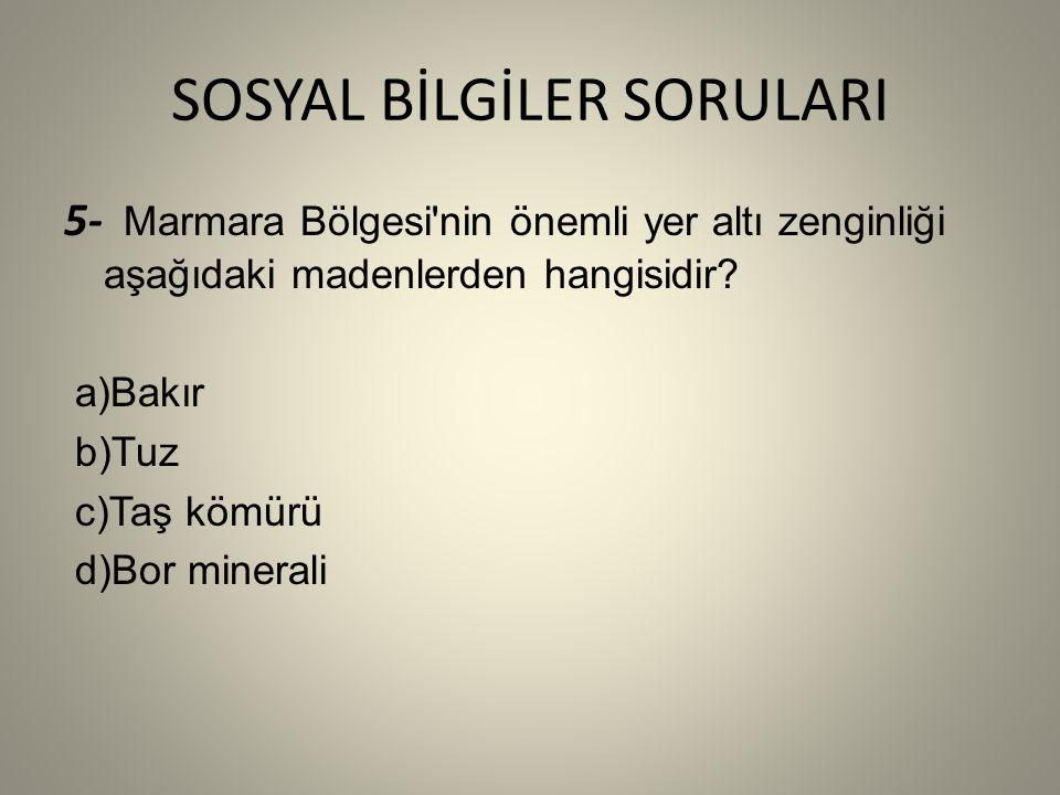 SOSYAL BİLGİLER SORULARI 5- Marmara Bölgesi nin önemli yer altı zenginliği aşağıdaki madenlerden hangisidir.