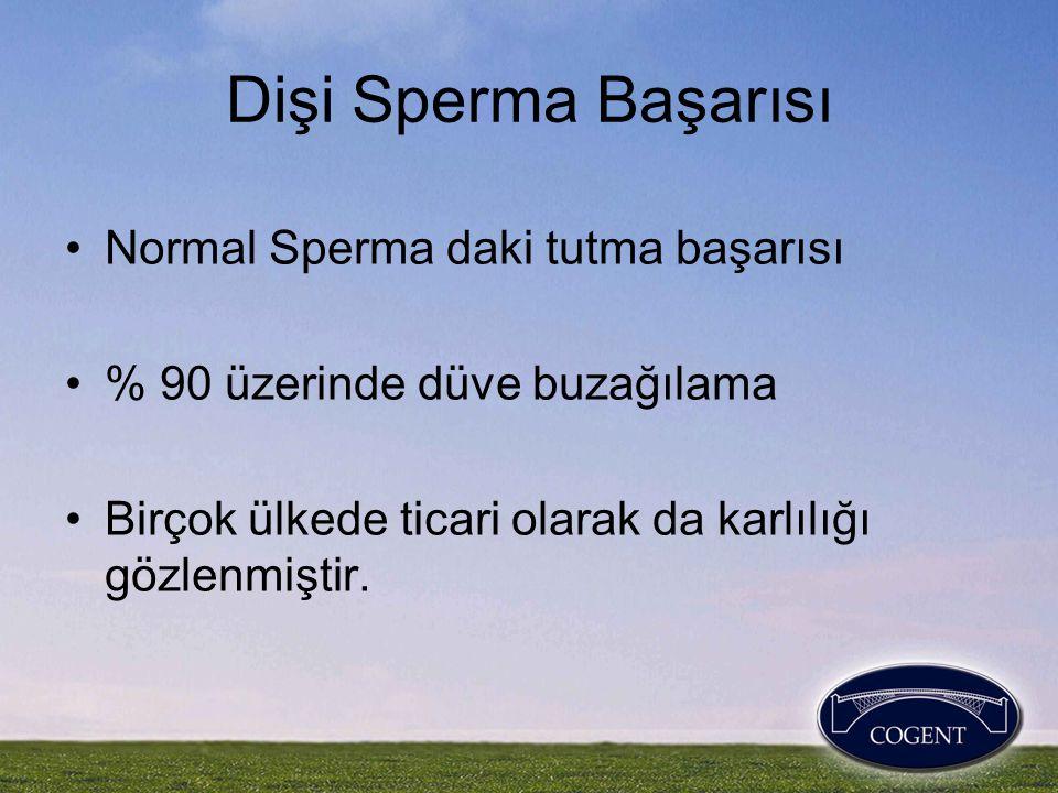 Dişi Sperma Başarısı •Normal Sperma daki tutma başarısı •% 90 üzerinde düve buzağılama •Birçok ülkede ticari olarak da karlılığı gözlenmiştir.