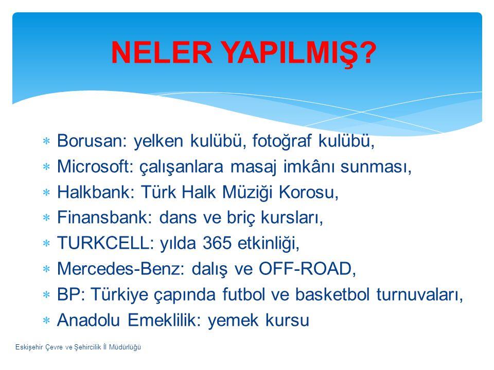  Borusan: yelken kulübü, fotoğraf kulübü,  Microsoft: çalışanlara masaj imkânı sunması,  Halkbank: Türk Halk Müziği Korosu,  Finansbank: dans ve b