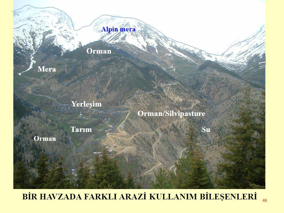 BİR HAVZADA FARKLI ARAZİ KULLANIM BİLEŞENLERİ Alpin mera \ Orman Mera Yerleşim Orman/Silvipasture Tarım Su 46 Orman