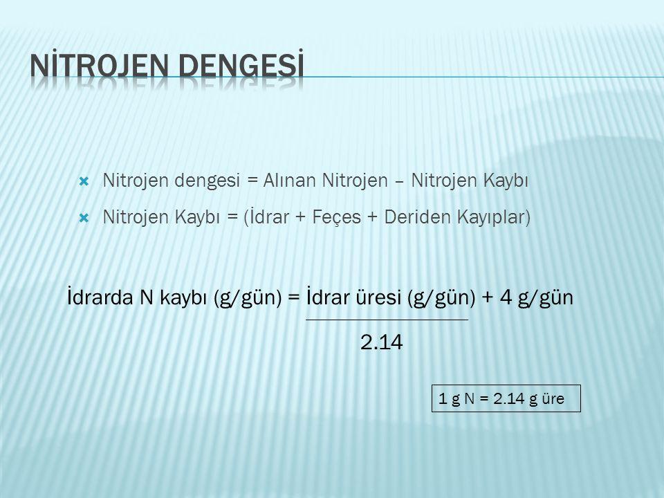 Nitrojen dengesi = Alınan Nitrojen – Nitrojen Kaybı  Nitrojen Kaybı = (İdrar + Feçes + Deriden Kayıplar) İdrarda N kaybı (g/gün) = İdrar üresi (g/g