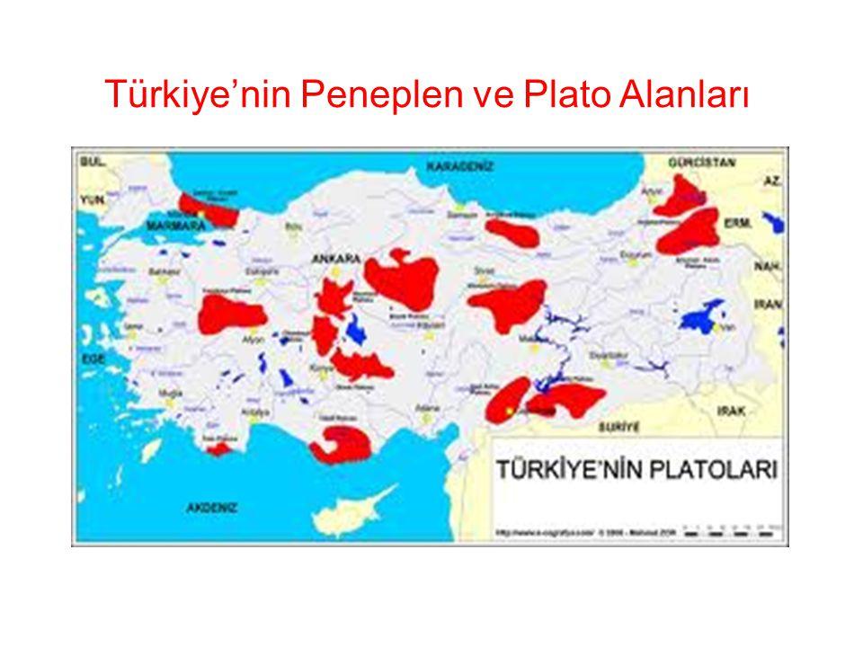 Türkiye'nin Peneplen ve Plato Alanları
