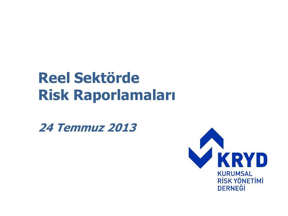 Reel Sektörde Risk Raporlamaları 24 Temmuz 2013