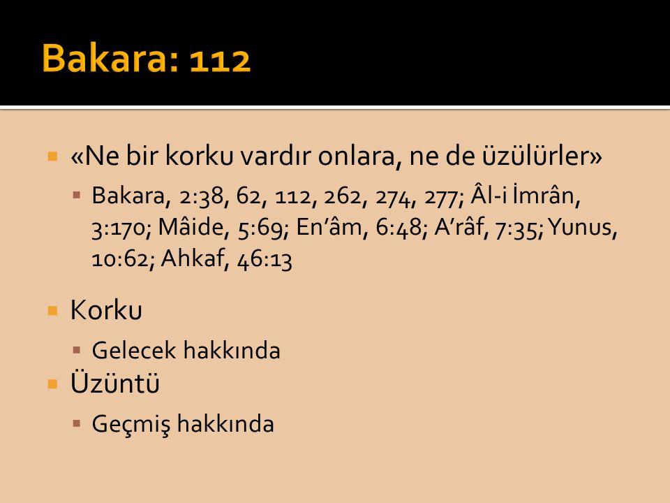  «Ne bir korku vardır onlara, ne de üzülürler»  Bakara, 2:38, 62, 112, 262, 274, 277; Âl-i İmrân, 3:170; Mâide, 5:69; En'âm, 6:48; A'râf, 7:35; Yunus, 10:62; Ahkaf, 46:13  Korku  Gelecek hakkında  Üzüntü  Geçmiş hakkında