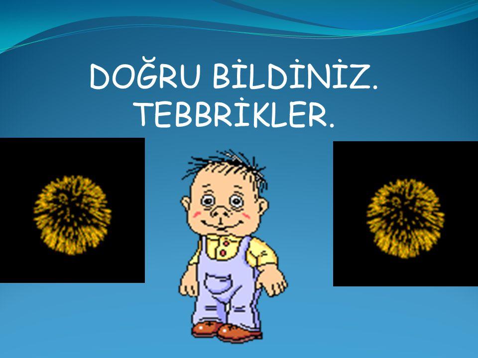 SORUYU DAHA DİKKATLİ OKUYUNUZ. TEKRAR DENE www.bilgiyolcusu.com