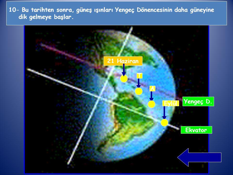 10- Bu tarihten sonra, güneş ışınları Yengeç Dönencesinin daha güneyine dik gelmeye başlar.