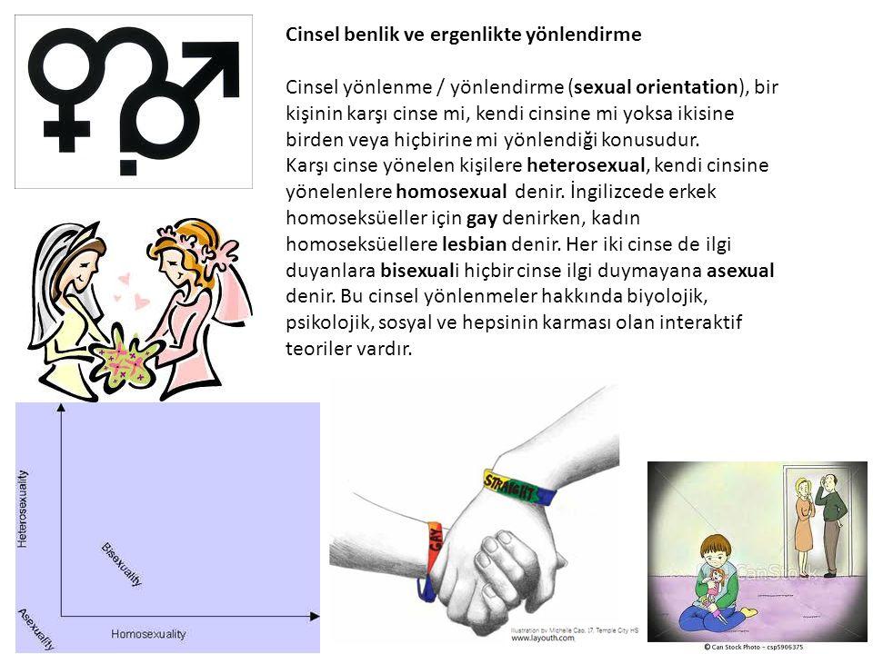Cinsel benlik ve ergenlikte yönlendirme Cinsel yönlenme / yönlendirme (sexual orientation), bir kişinin karşı cinse mi, kendi cinsine mi yoksa ikisine