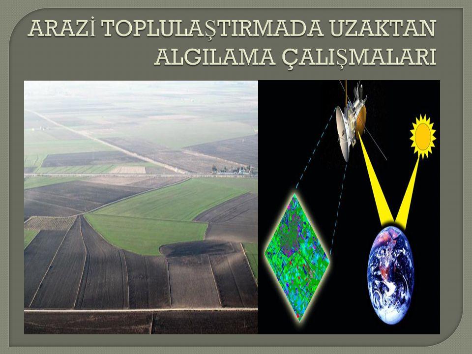 KAYNAKLAR  www.tuik.gov.tr www.tuik.gov.tr  www.hkmo.org.tr www.hkmo.org.tr  www.tarlabitkileri.gov.tr www.tarlabitkileri.gov.tr  www.belgeler.com www.belgeler.com  www.bizimelmali.com www.bizimelmali.com  www.ortadogugazetesi.net www.ortadogugazetesi.net  www.hassastarim.com www.hassastarim.com  biyosistem.uludag.edu.tr  www.tagem.gov.tr