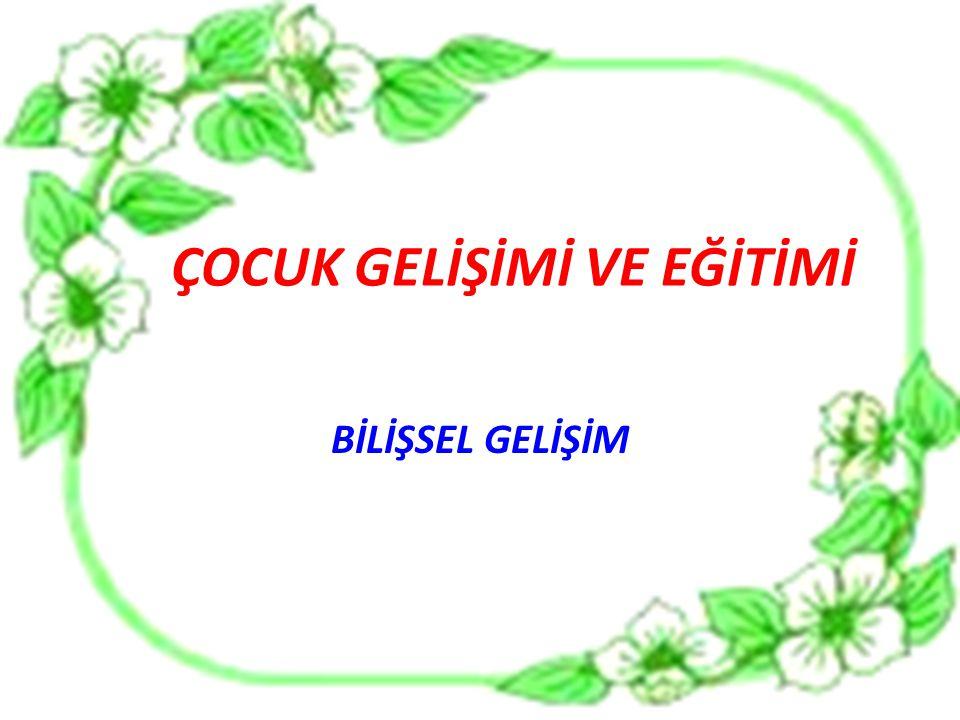  ÖMEROĞLU Esra, Adalet KANDIR, Bilişsel Gelişim, Morpa Kültür Yayıncılık, İstanbul.