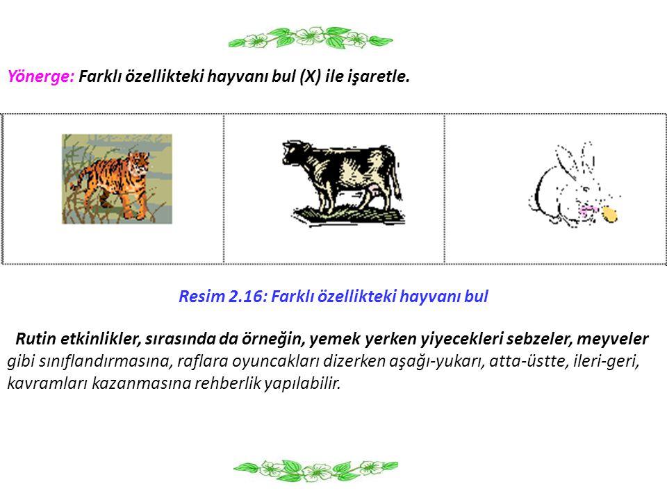 Yönerge: Farklı özellikteki hayvanı bul (X) ile işaretle. Resim 2.16: Farklı özellikteki hayvanı bul Rutin etkinlikler, sırasında da örneğin, yemek ye