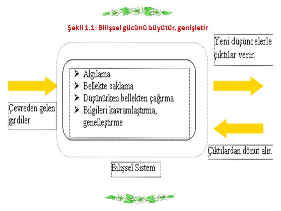 1.2.Bilişsel Gelişimle İlgili Öğeler 1.2.1.
