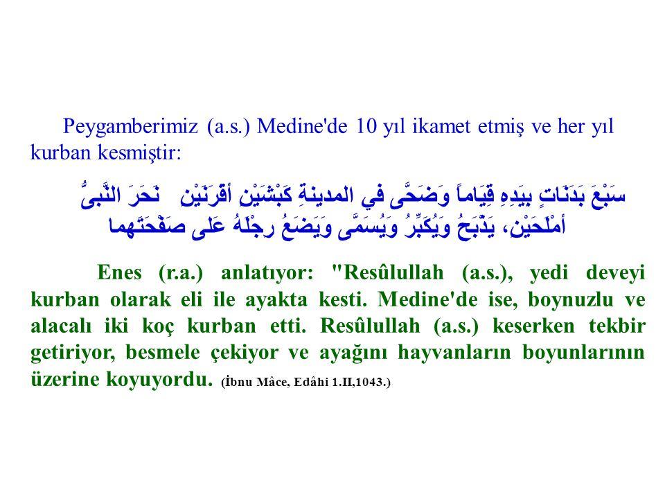 Peygamberimiz (a.s.) Medine'de 10 yıl ikamet etmiş ve her yıl kurban kesmiştir: نَحَرَ النَّبىُّ سَبْعَ بَدَنَاتٍ بِيَدِهِ قِيَاماً وَضَحَّى في المدين