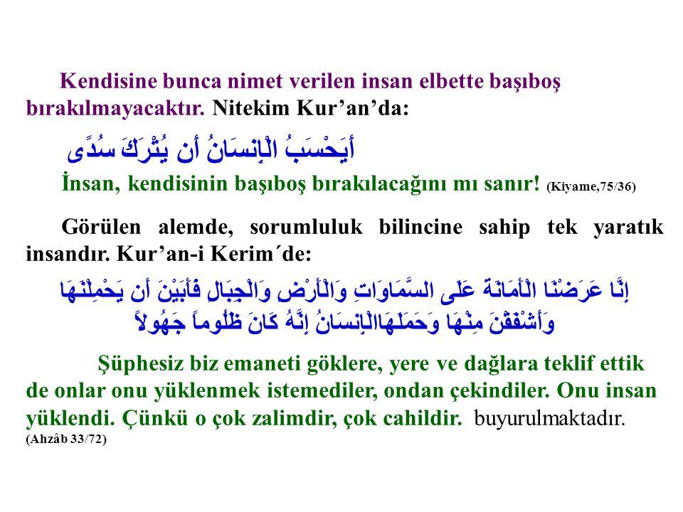 Kendisine bunca nimet verilen insan elbette başıboş bırakılmayacaktır. Nitekim Kur'an'da: أَيَحْسَبُ الْإِنسَانُ أَن يُتْرَكَ سُدًى İnsan, kendisinin