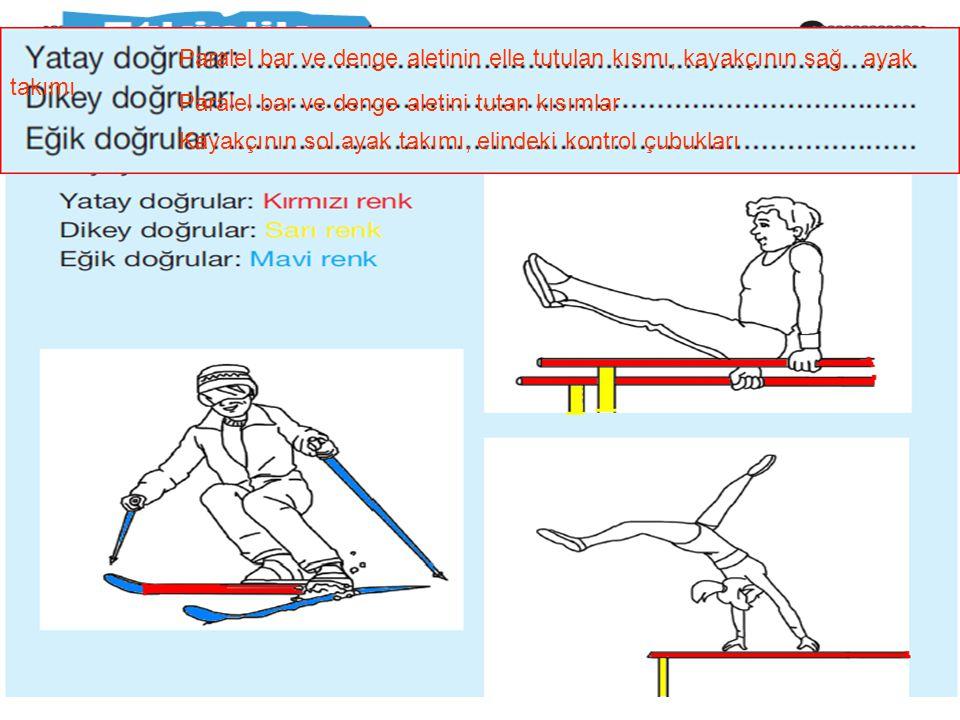 Paralel bar ve denge aletinin elle tutulan kısmı, kayakçının sağ ayak takımı Paralel bar ve denge aletini tutan kısımlar Kayakçının sol ayak takımı, elindeki kontrol çubukları