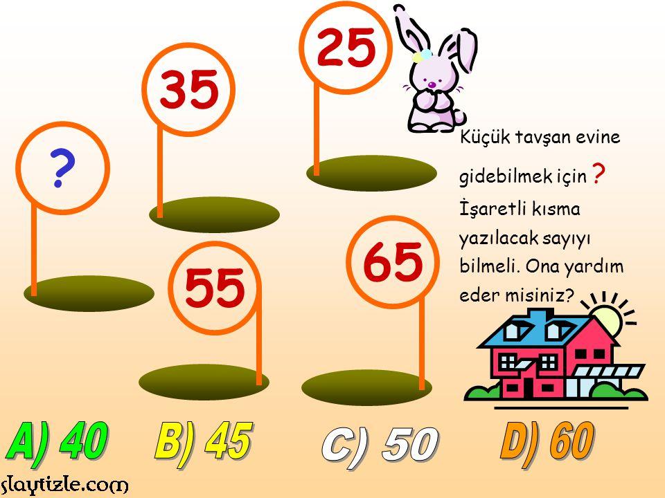 Küçük tavşan evine gidebilmek için .İşaretli kısma yazılacak sayıyı bilmeli.