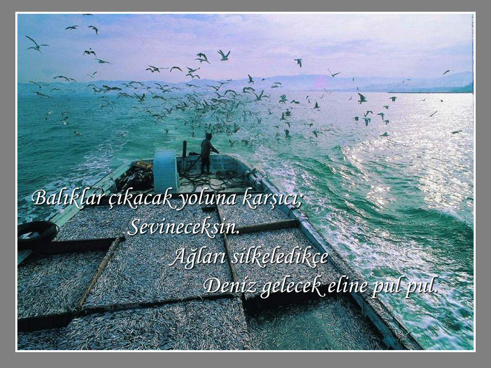 Balıklar çıkacak yoluna karşıcı; Sevineceksin. Ağları silkeledikçe Deniz gelecek eline pul pul.