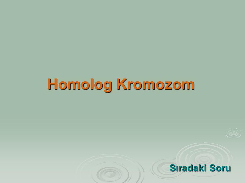Homolog Kromozom Sıradaki Soru Sıradaki Soru