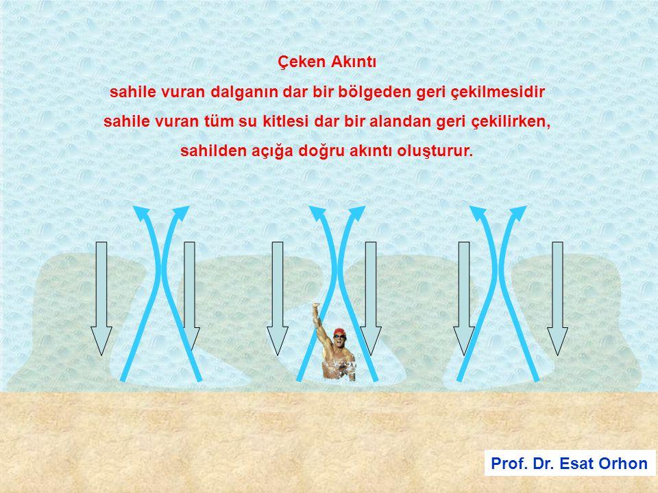Prof. Dr. Esat Orhon