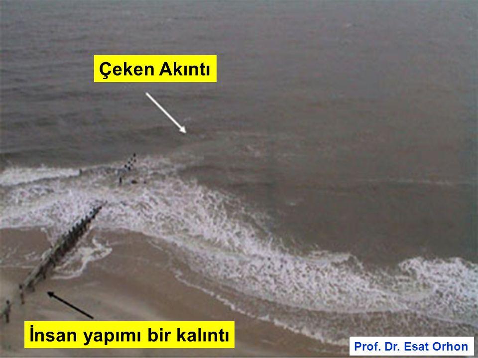 Suyun rengi farklıdır Prof. Dr. Esat Orhon