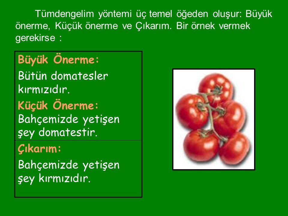 Büyük Önerme: Bütün domatesler kırmızıdır. Küçük Önerme: Bahçemizde yetişen şey domatestir. Çıkarım: Bahçemizde yetişen şey kırmızıdır. Tümdengelim yö