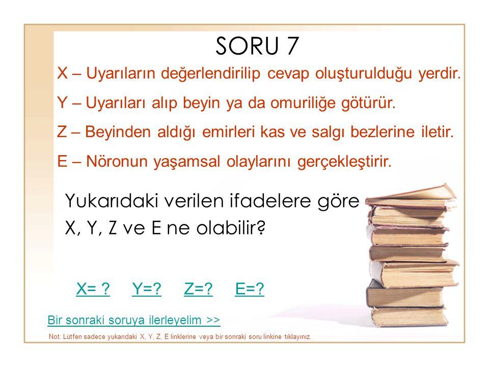 SORU 7 Yukarıdaki verilen ifadelere göre X, Y, Z ve E ne olabilir? X – Uyarıların değerlendirilip cevap oluşturulduğu yerdir. Y – Uyarıları alıp beyin