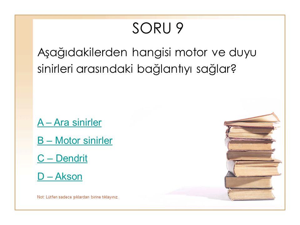 SORU 9 Aşağıdakilerden hangisi motor ve duyu sinirleri arasındaki bağlantıyı sağlar? A – Ara sinirler B – Motor sinirler C – Dendrit D – Akson Not: Lü