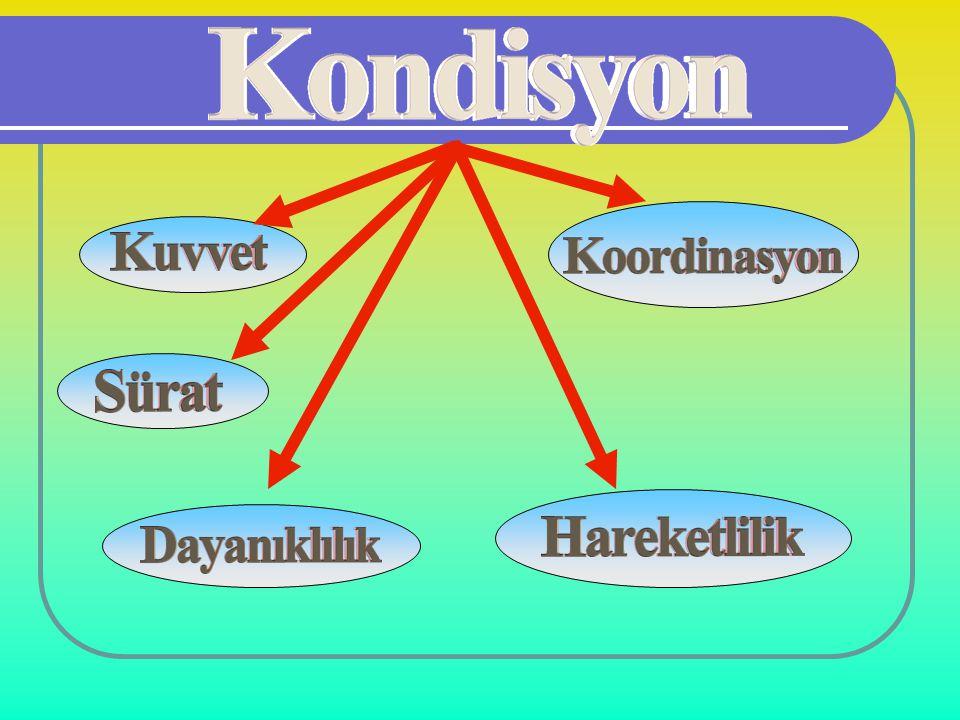 1 1 Alıştırmalar çeşitli olmalı ve hareket genişliği arttırılmalıdır.