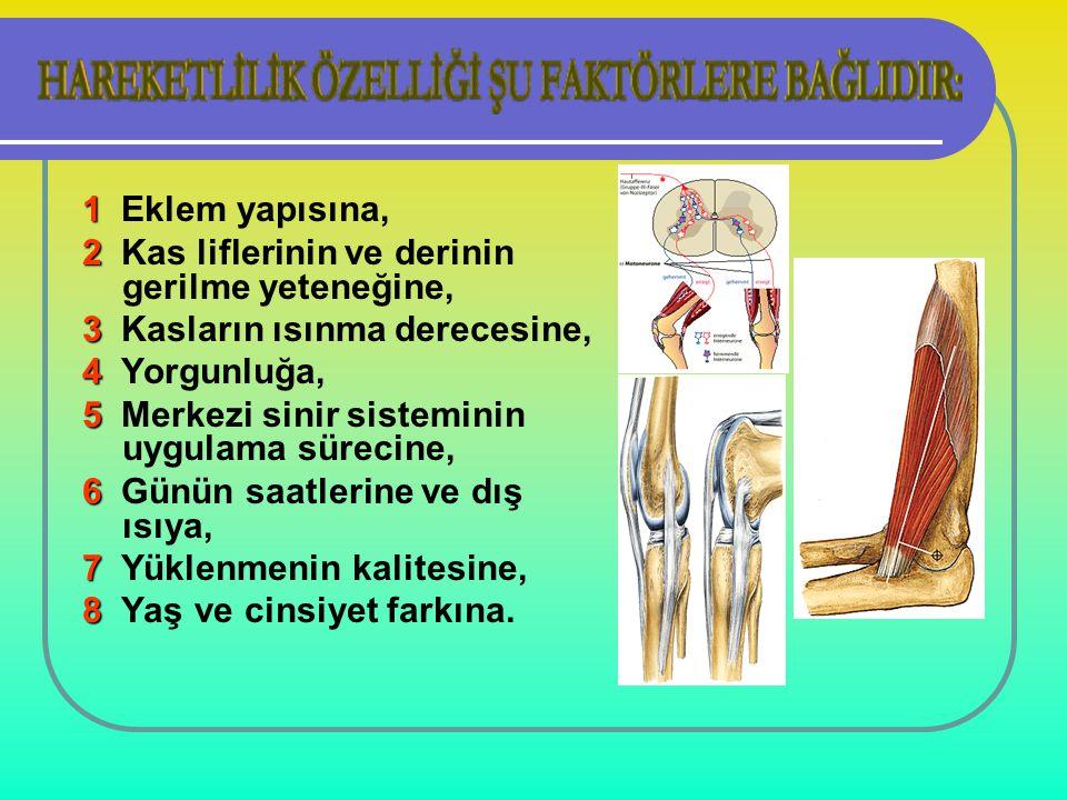 1 1 Eklem yapısına, 2 2 Kas liflerinin ve derinin gerilme yeteneğine, 3 3 Kasların ısınma derecesine, 4 4 Yorgunluğa, 5 5 Merkezi sinir sisteminin uyg
