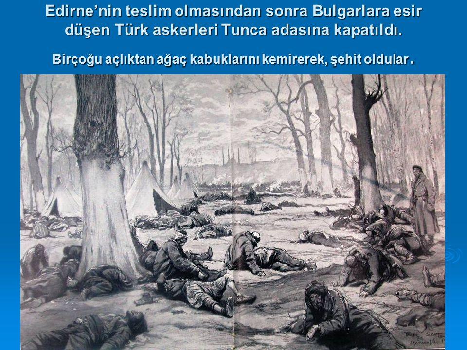 Edirne'nin teslim olmasından sonra Bulgarlara esir düşen Türk askerleri Tunca adasına kapatıldı. Birçoğu açlıktan ağaç kabuklarını kemirerek, şehit ol