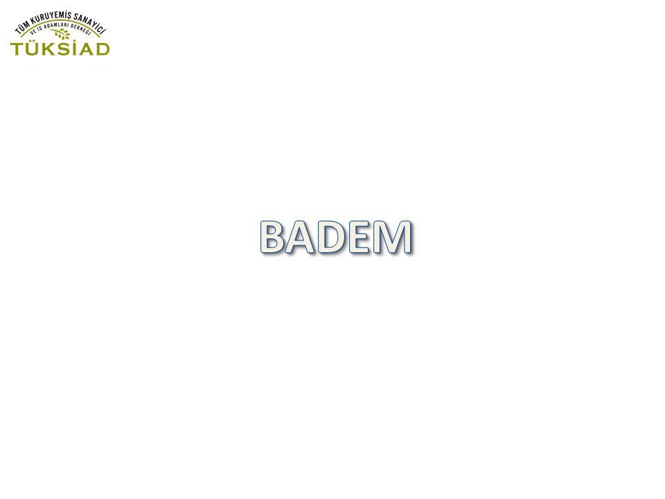 Badem ilk olarak İran,Türkiye,Suriye,Filistin'de yetiştirilmiş buralardan Yunanistan, Kuzey Afrika, İtalya, Kuzey Amerika'ya götürülmüş.