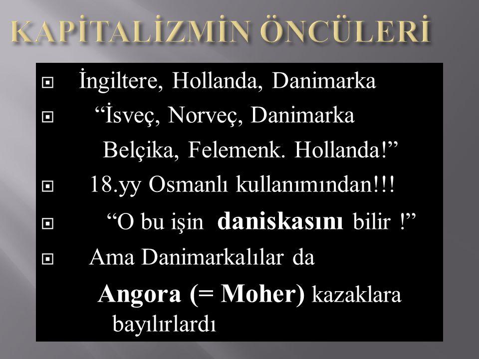 """ İngiltere, Hollanda, Danimarka  """"İsveç, Norveç, Danimarka Belçika, Felemenk. Hollanda!""""  18.yy Osmanlı kullanımından!!!  """"O bu işin daniskasını b"""