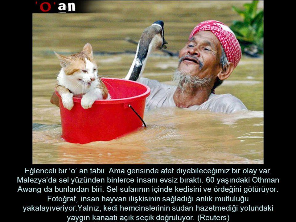 Eğlenceli bir 'o' an tabii. Ama gerisinde afet diyebileceğimiz bir olay var. Malezya'da sel yüzünden binlerce insanı evsiz bıraktı. 60 yaşındaki Othma