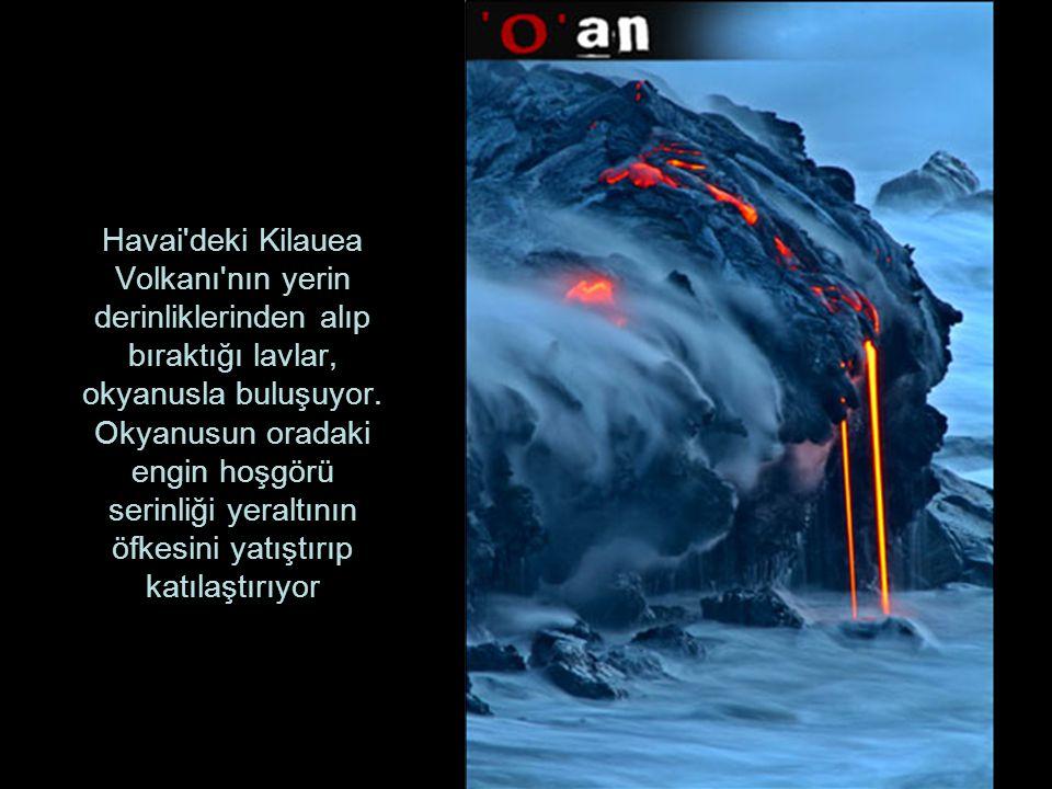 Havai'deki Kilauea Volkanı'nın yerin derinliklerinden alıp bıraktığı lavlar, okyanusla buluşuyor. Okyanusun oradaki engin hoşgörü serinliği yeraltının