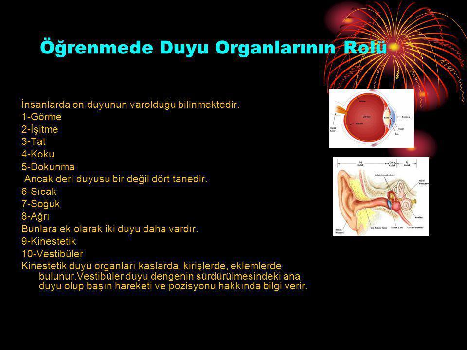 Öğrenmede Duyu Organlarının Rolü İnsanlarda on duyunun varolduğu bilinmektedir. 1-Görme 2-İşitme 3-Tat 4-Koku 5-Dokunma Ancak deri duyusu bir değil dö