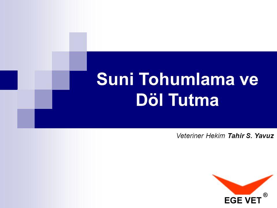 Suni Tohumlama ve Döl Tutma Veteriner Hekim Tahir S. Yavuz