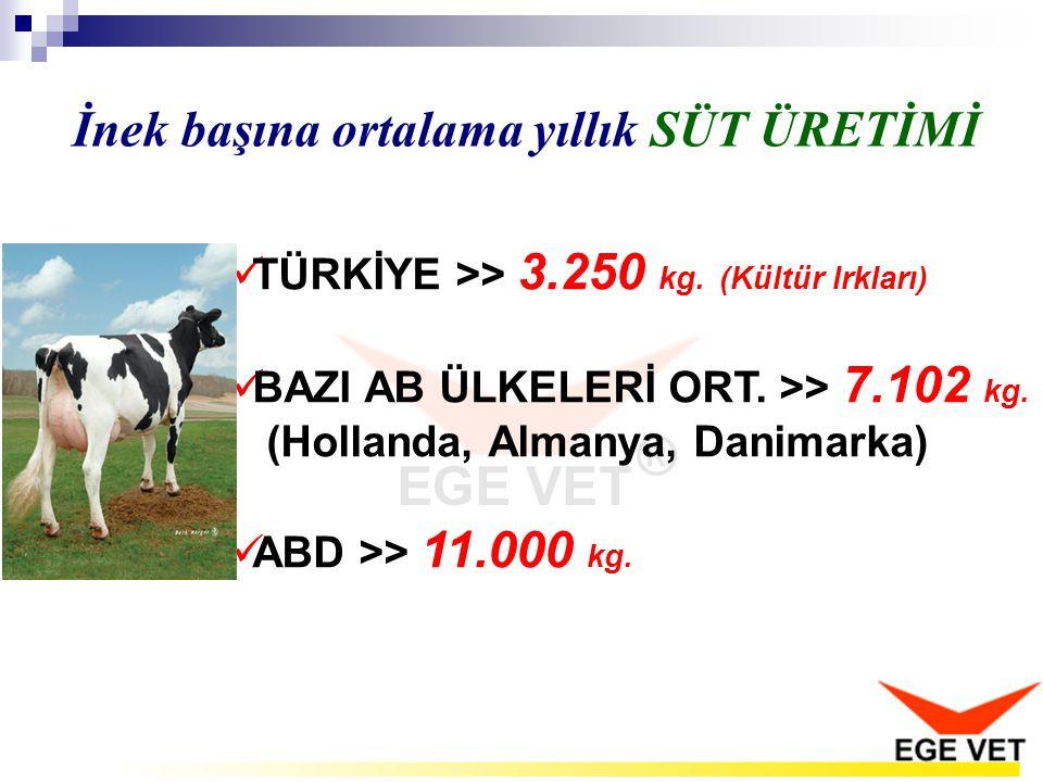  TÜRKİYE >> 3.250 kg. (Kültür Irkları)  BAZI AB ÜLKELERİ ORT. >> 7.102 kg. (Hollanda, Almanya, Danimarka)  ABD >> 11.000 kg. İnek başına ortalama y