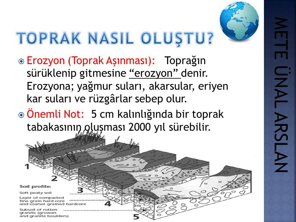 """ Erozyon (Toprak Aşınması): Toprağın sürüklenip gitmesine """"erozyon"""" denir. Erozyona; yağmur suları, akarsular, eriyen kar suları ve rüzgârlar sebep o"""
