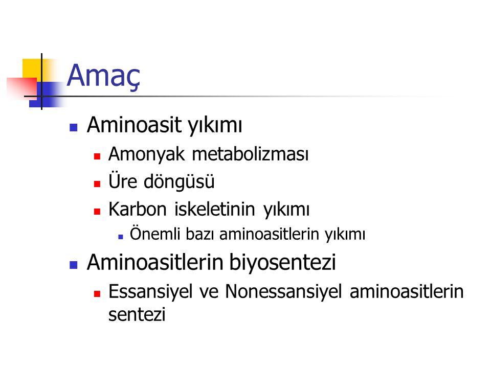 Amaç  Aminoasit yıkımı  Amonyak metabolizması  Üre döngüsü  Karbon iskeletinin yıkımı  Önemli bazı aminoasitlerin yıkımı  Aminoasitlerin biyosentezi  Essansiyel ve Nonessansiyel aminoasitlerin sentezi