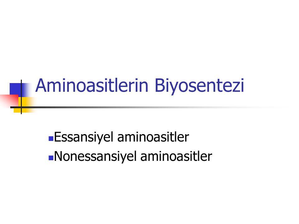 Aminoasitlerin Biyosentezi  Essansiyel aminoasitler  Nonessansiyel aminoasitler