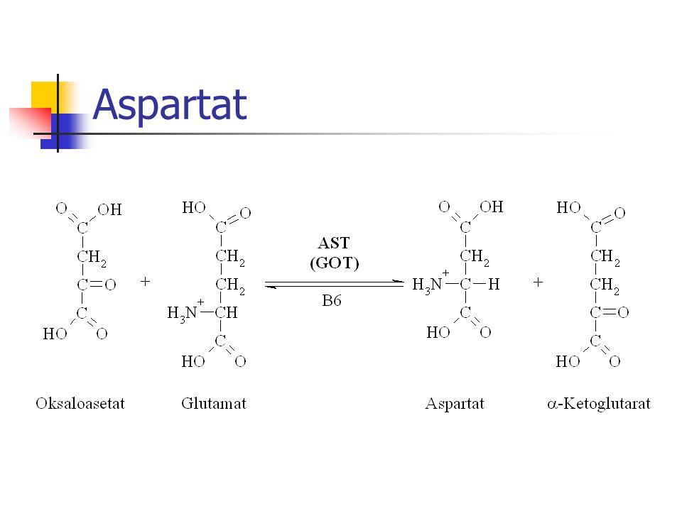 Aspartat
