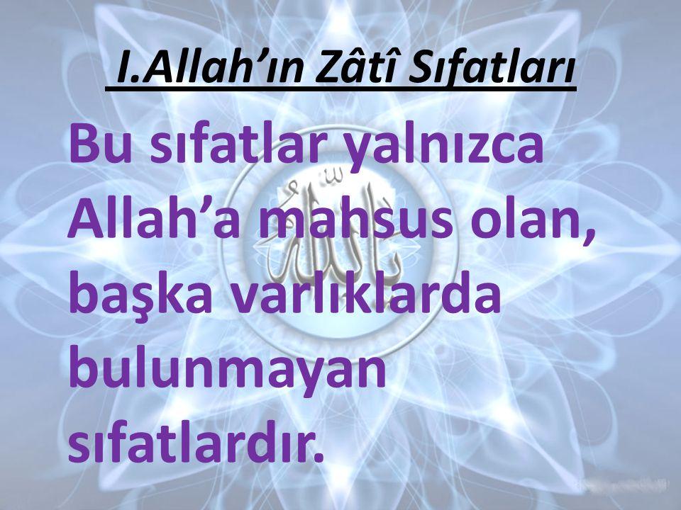 Bu sıfatlar yalnızca Allah'a mahsus olan, başka varlıklarda bulunmayan sıfatlardır.