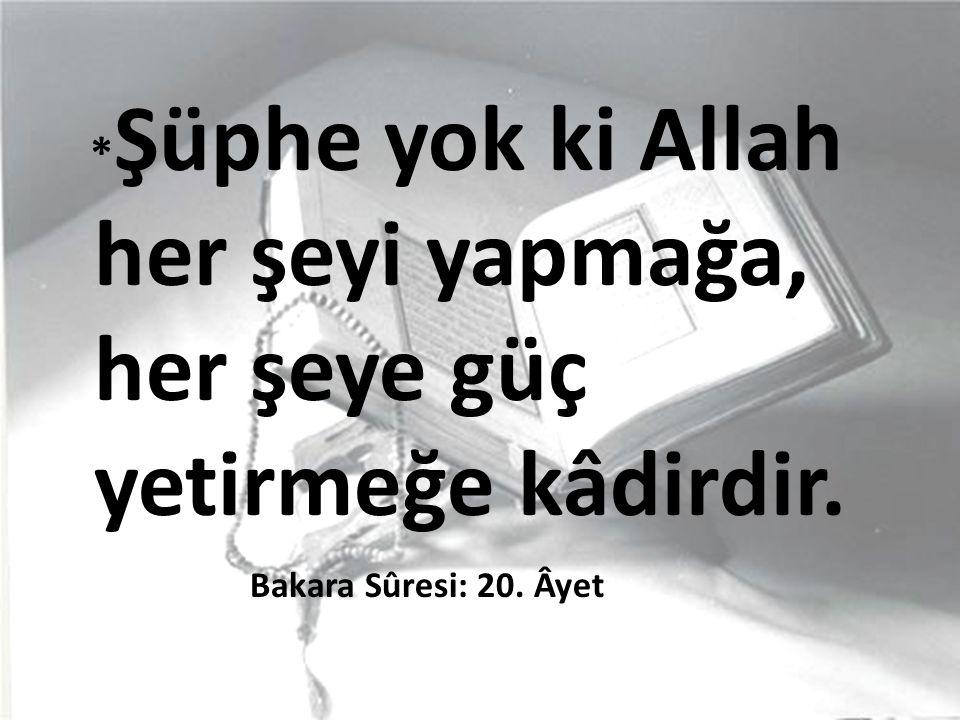 * Şüphe yok ki Allah her şeyi yapmağa, her şeye güç yetirmeğe kâdirdir. Bakara Sûresi: 20. Âyet