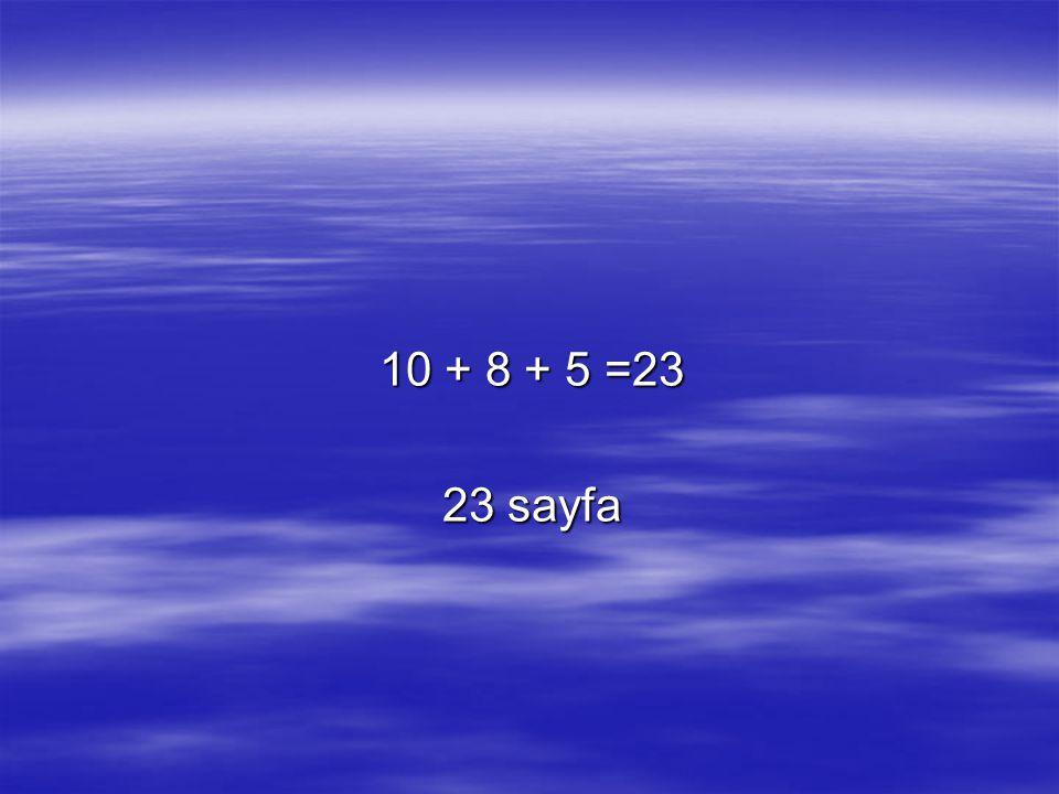 10 + 8 + 5 =23 23 sayfa