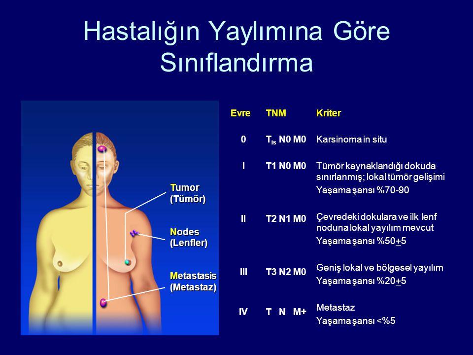 Tumor (Tümör) Nodes (Lenfler) Metastasis (Metastaz) EvreTNMKriter 0 I II III IV T is N0 M0 T1 N0 M0 T2 N1 M0 T3 N2 M0 T N M+ Karsinoma in situ Tümör kaynaklandığı dokuda sınırlanmış; lokal tümör gelişimi Yaşama şansı %70-90 Çevredeki dokulara ve ilk lenf noduna lokal yayılım mevcut Yaşama şansı %50+5 Geniş lokal ve bölgesel yayılım Yaşama şansı %20+5 Metastaz Yaşama şansı <%5 Hastalığın Yaylımına Göre Sınıflandırma